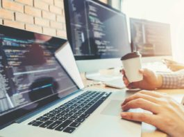 freelance web developer